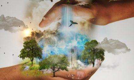 Conservación de la Naturaleza: punto de partida para el Turismo Sostenible en Áreas Protegidas